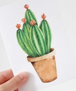Karte Kaktus Little Pink Flowers, The Fox in the Attic