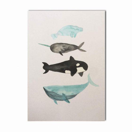 Karte Wale, Bär von Pappe